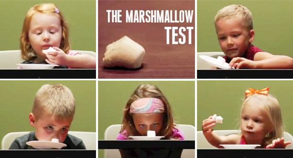 marshmellow-test-604-cs050713